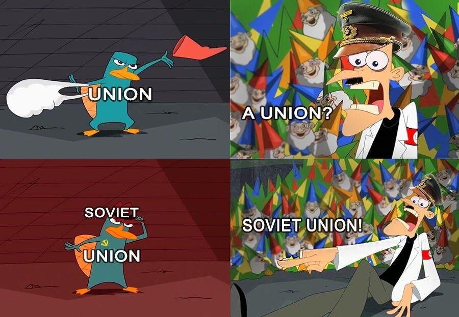 Comrade Perry Perry The Platypus Know Your Meme
