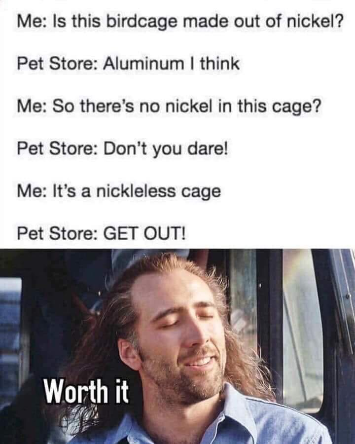 100 Best Funny Nicholas Cage Memes Images Memes Funny Cage