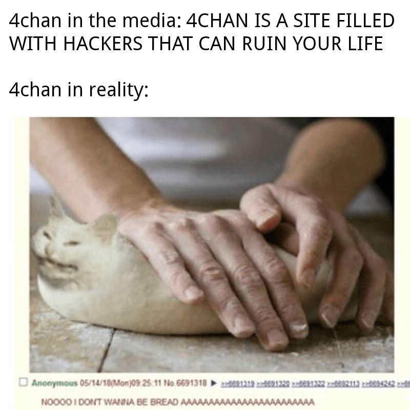 4chan In The Media 4chan In Reality M Ucmg M Japanese Dog