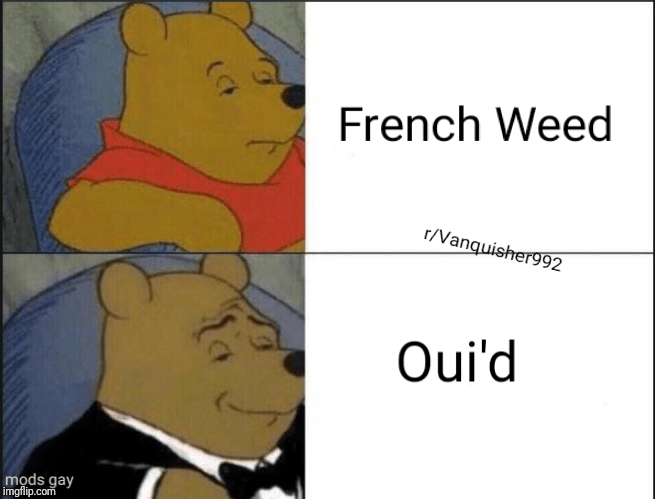 French Weed Tuxedo Winnie The Pooh Know Your Meme