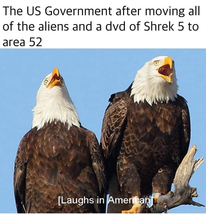 Us Counter Strategy Storm Area 51 Know Your Meme