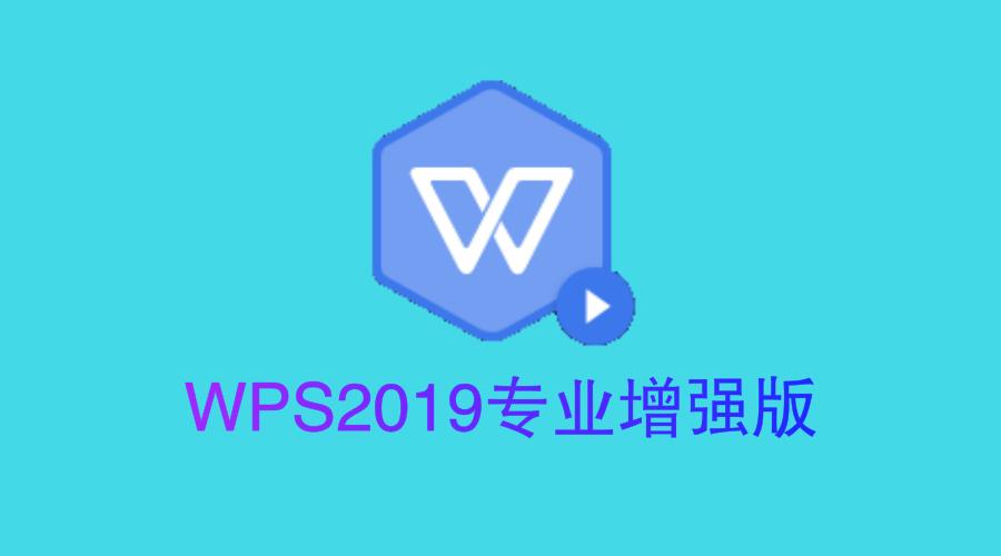 WPS Office 2019 11.8.2.8411 专业增强版