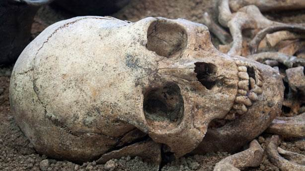 2. Homo Naledi