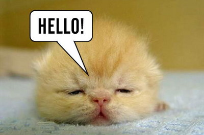 Hello! Myspace Comments