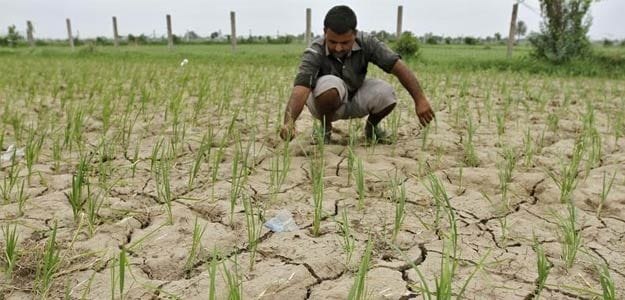 Government Offers Diesel Subsidy to Farmers Hit by Patchy Monsoon