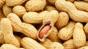 Image result for images of peanuts