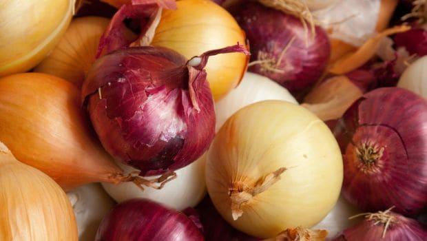 types onion 620