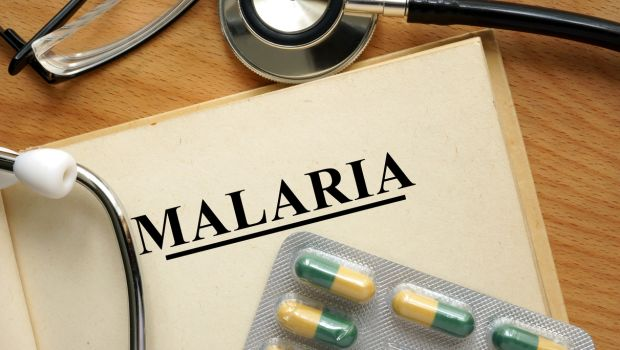 malaria 620