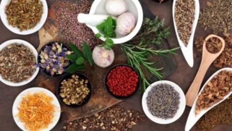 Image result for ayurvedic remedies