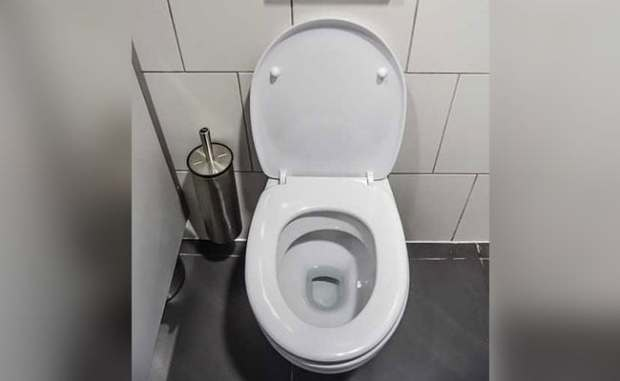8.5 Lakh Toilets In Bihar Was Easily Doable: Government