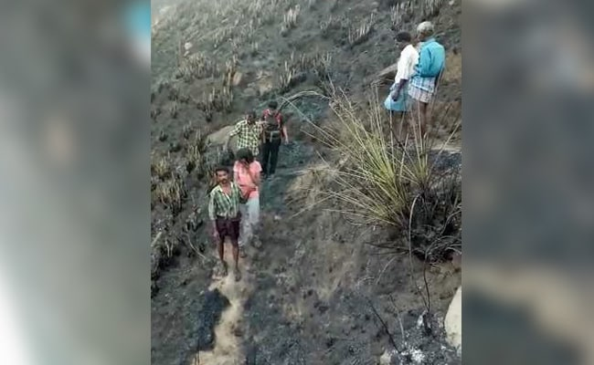 forest fire girls rescued