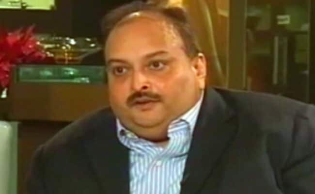 Fugitive Jeweller Mehul Choksi Gets Bail In Dominica On Medical Grounds
