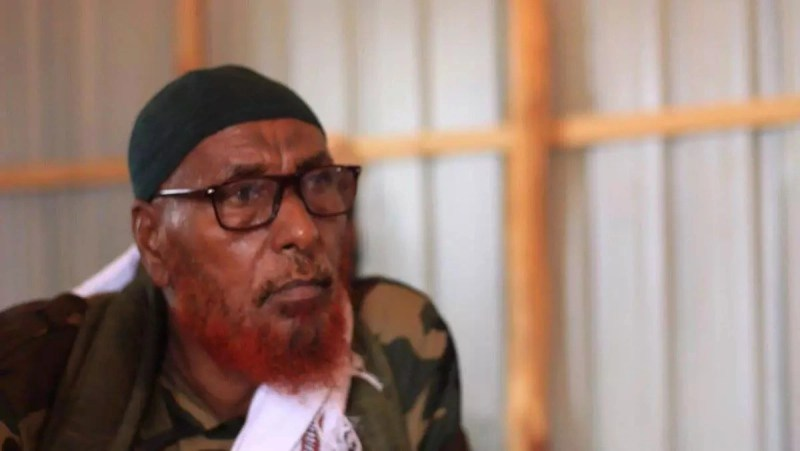 The ruthless old men said to advice al-Shabaab militants