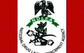 6 Functions of Nigerian Drug Law Enforcement Agency and Role in Preventing Drug Abuse
