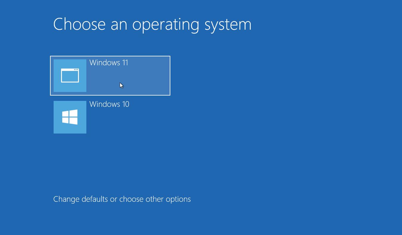 choose OS