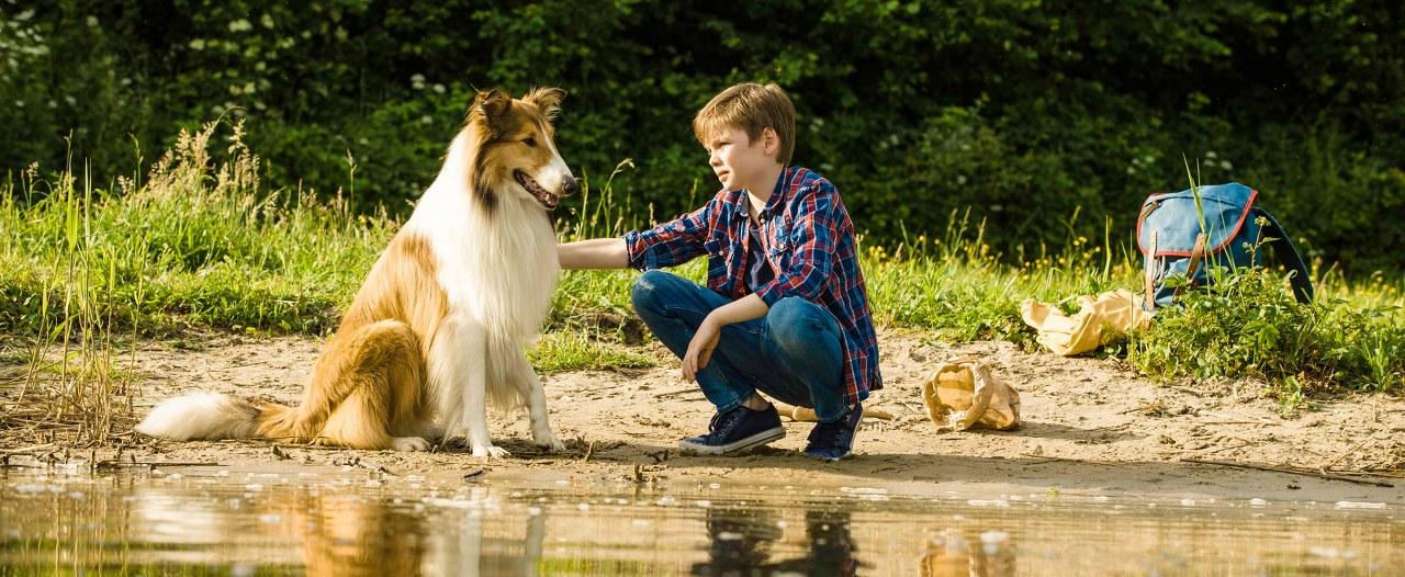 Lassie-Come-Home-1280x526