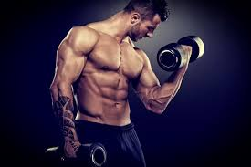 Weight Lifting Exercise – Lose Weight, Construct Muscle, & Get Wholesome on the Identical Time
