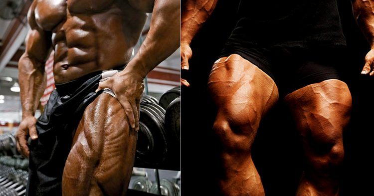 Greatest Quad Workouts: High 10 Quad Workouts of All Time