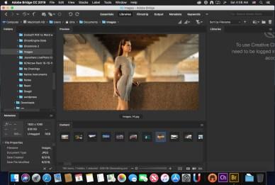 Adobe Bridge 2021 v11.0 incl. ARC13.1 Multilingual macOS