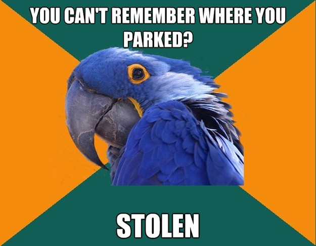 Paranoid Parrot - you cant remember where you parked stole..