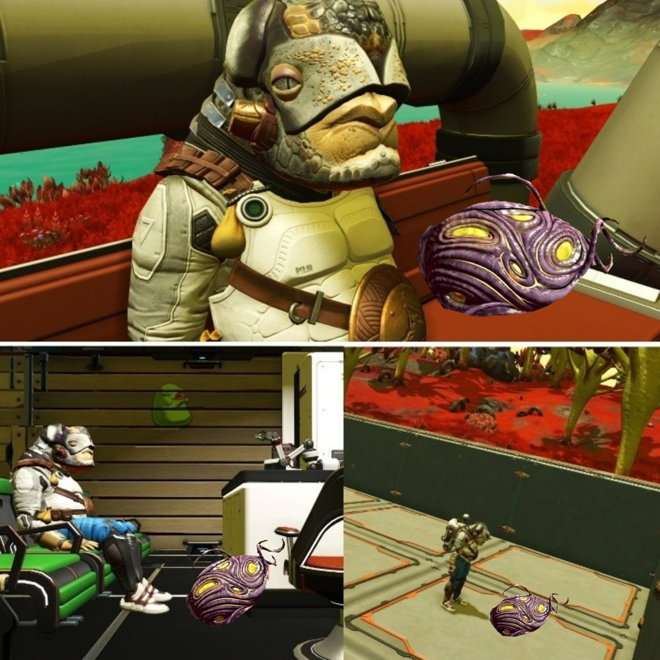 Wife If All You Re Going To Do Is Play Nms And Make Stupid Egg