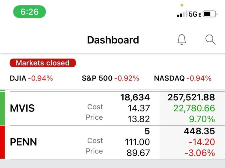 MVIS YOLO Update: Bought 2k more shares, in 268k, down 11k ...