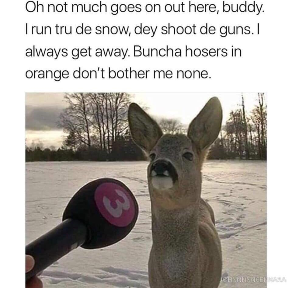 Oh Buncha Hosers Don T Bother Me None Memes