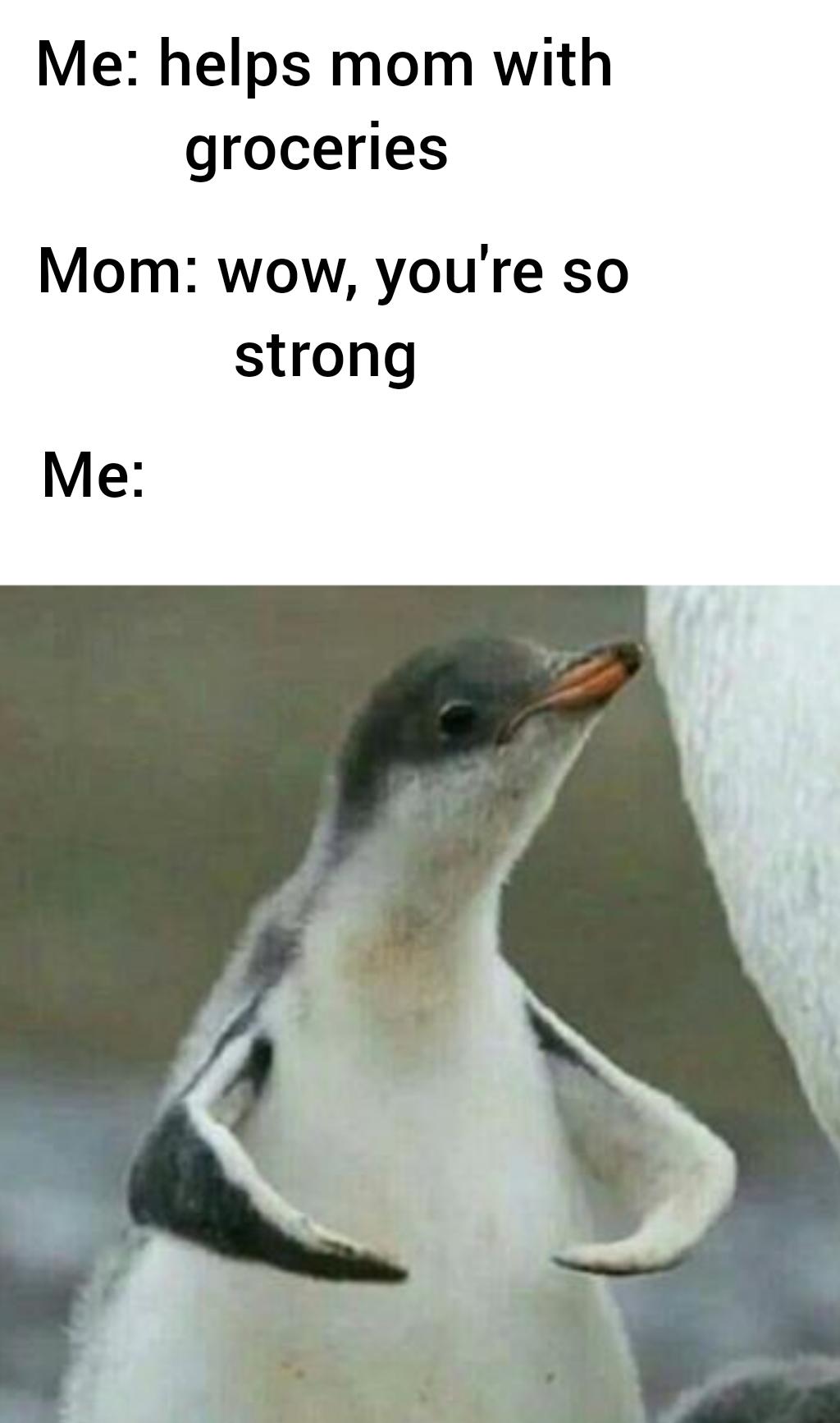 I Am Strong Boi Memes