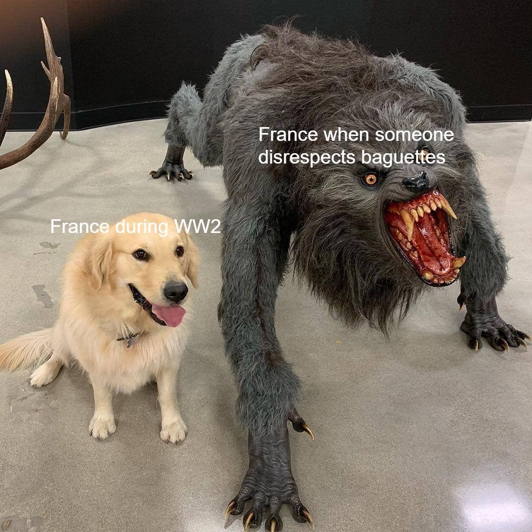 Oui Oui Surrender Via R Dankmemes Funny Memes Content