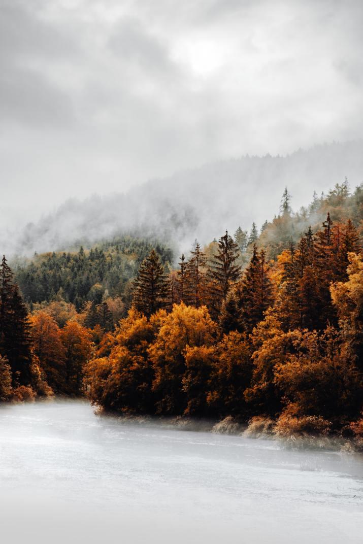 Golden Autumn in Austria. [2880×1800]
