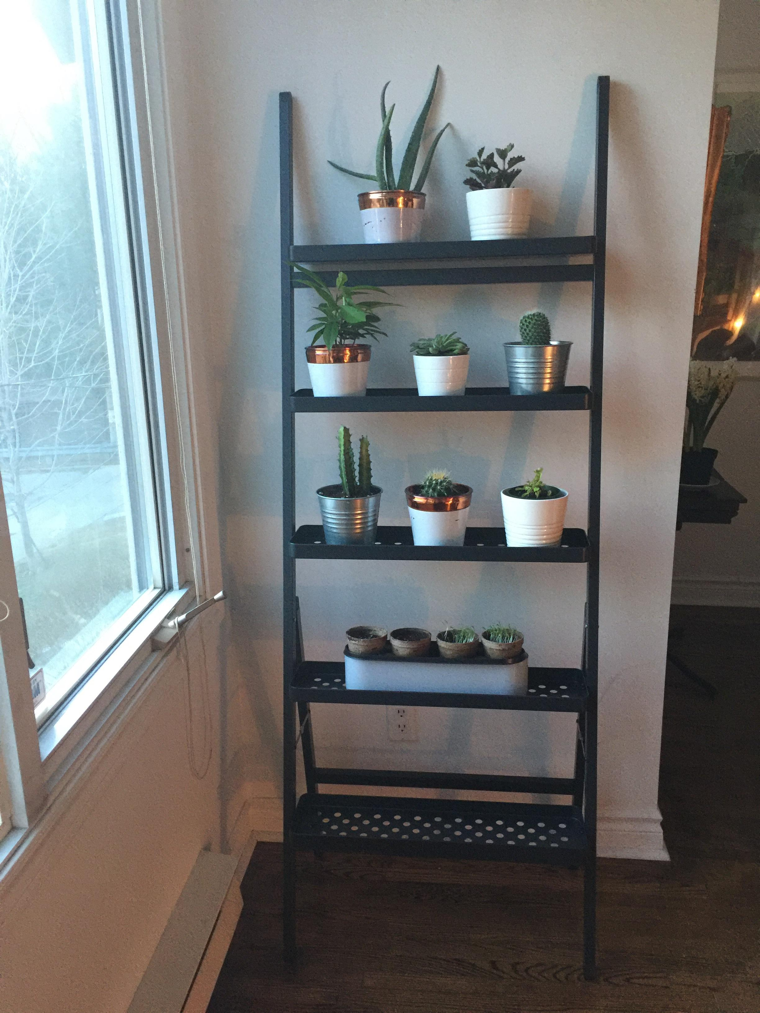 My New Ikea Plant Stand With Some Of My Babies Indoorgarden