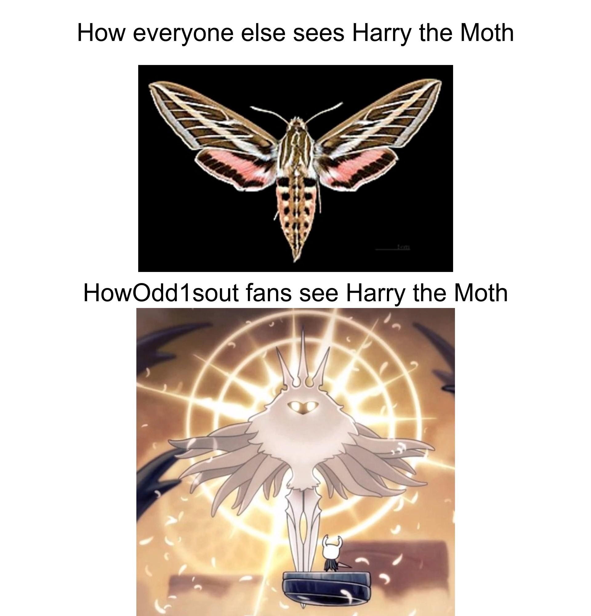 My Fantasy Reacting To The Moth Meme Lately 9gag