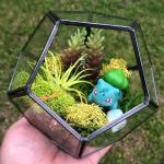My Second Pokemon Terrarium Featuring Another Bulbasaur Somethingimade