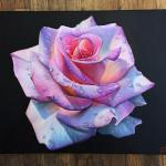 Here S Another One Of My Roses Acrylic Paint On Canvas Let Me Know What You Think Painting