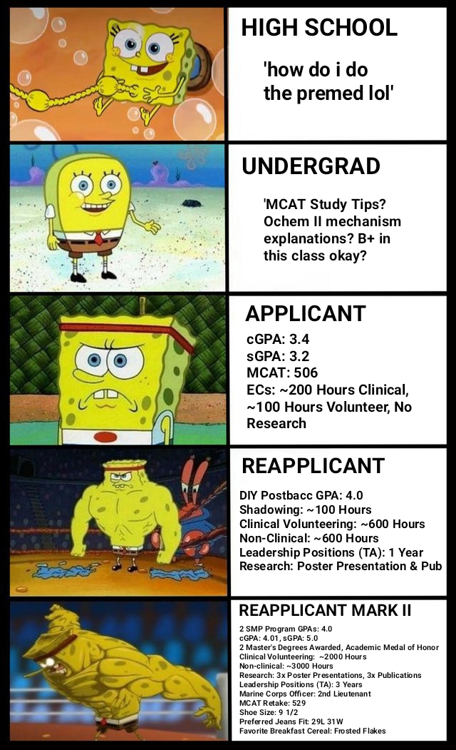 An Old Meme I Made Remastered For This Cycle The Premed Student