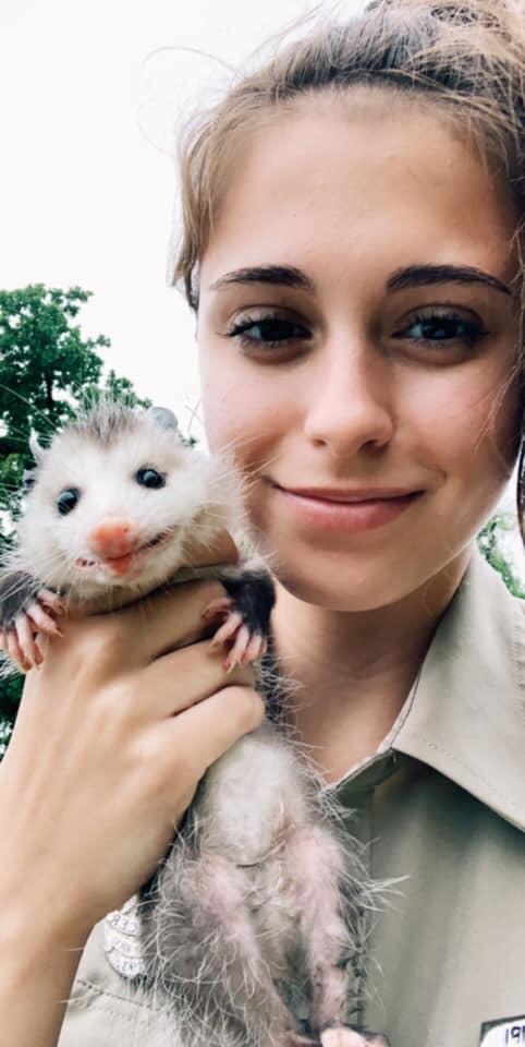 Local Aco With The Cutest Little Possum Aww