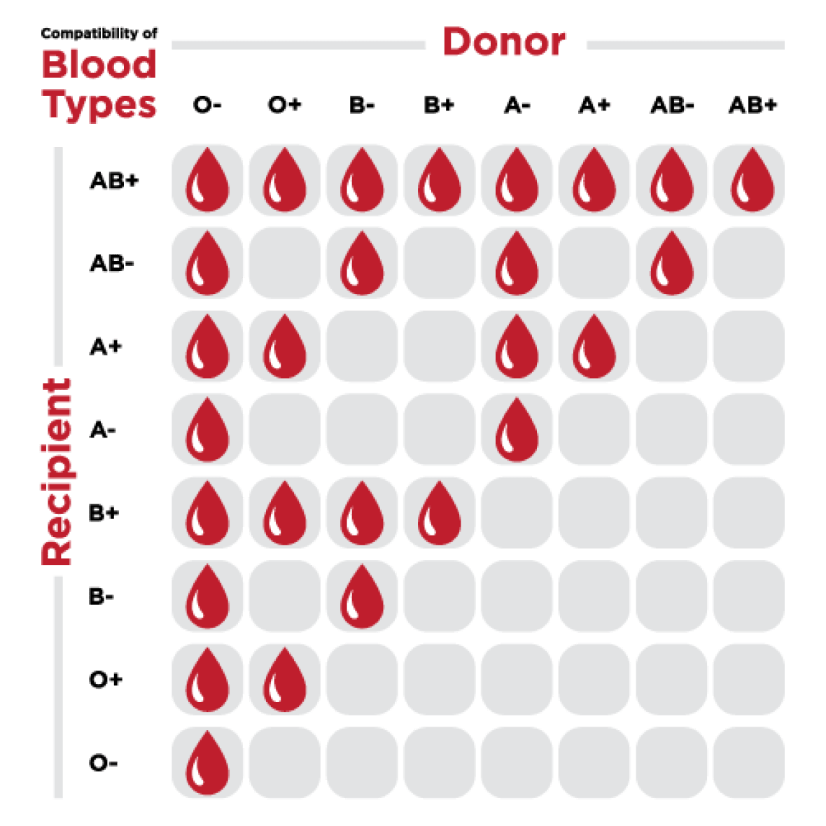 Blood Type Compatibility Chart Coolguides