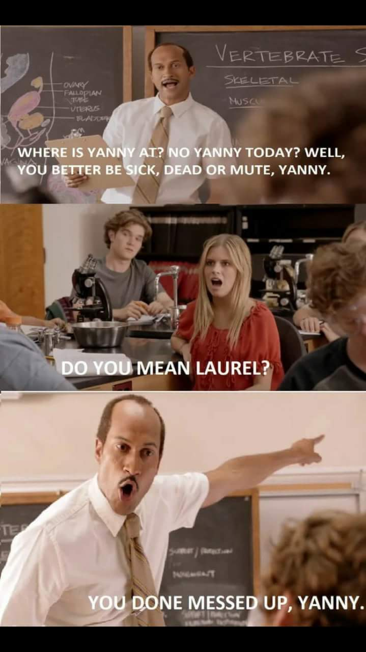 You Done Messed Up Yanny Funny
