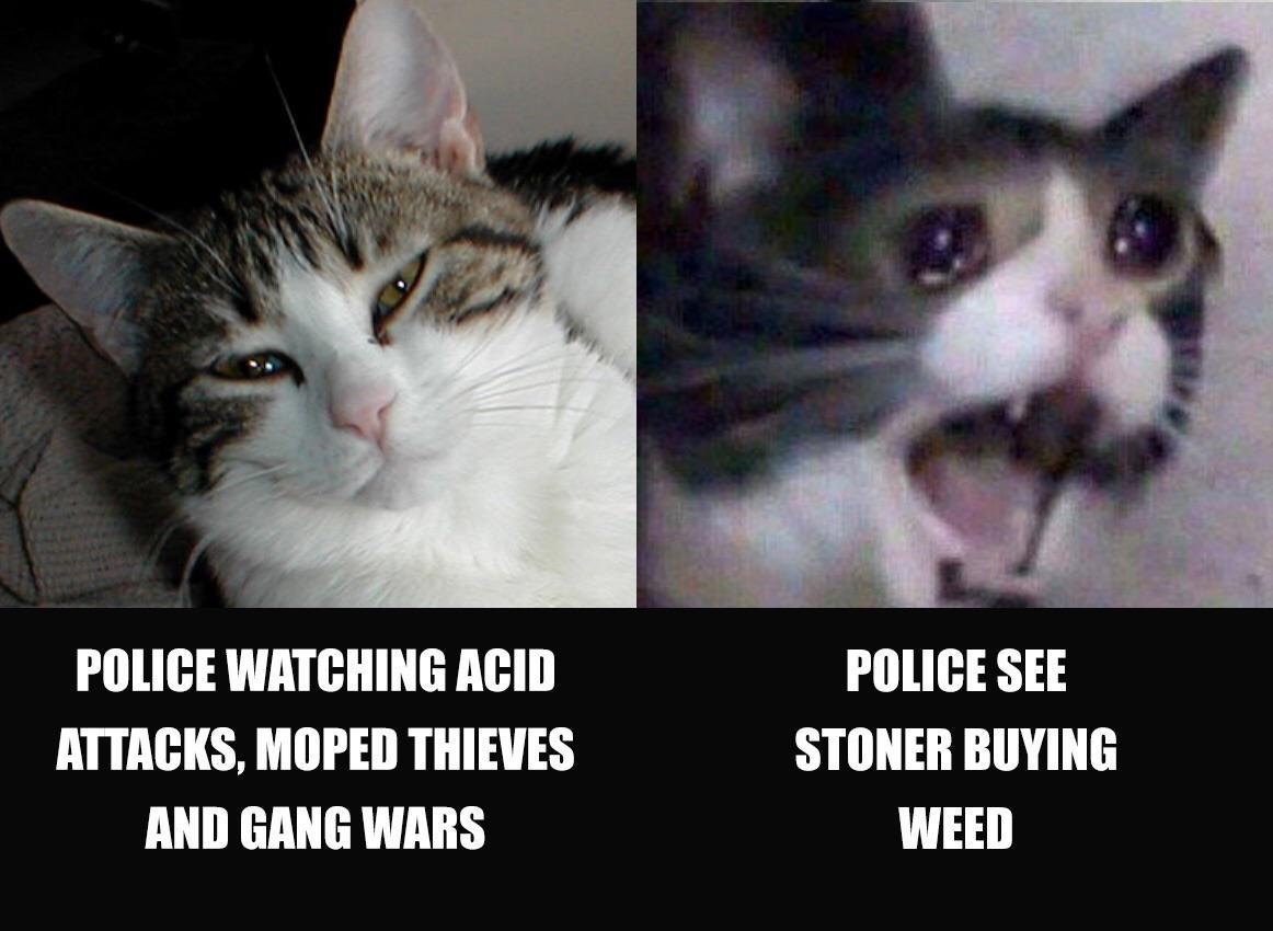 Eu Meme Police Memes