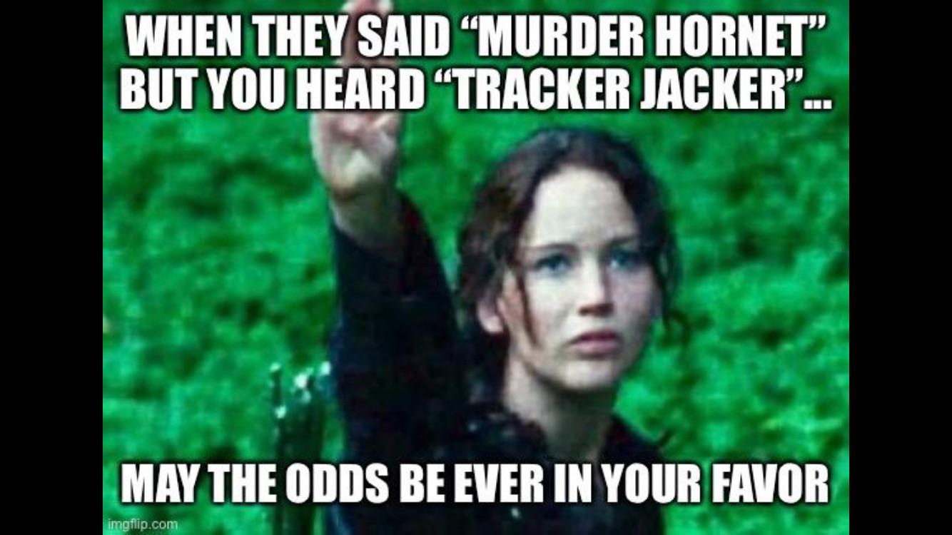25 Best Memes About Hunger Games Odds Hunger Games Odds Memes