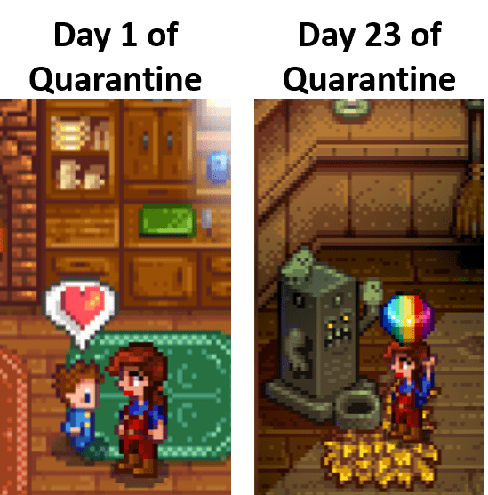 Quarantine Meme Stardewmemes