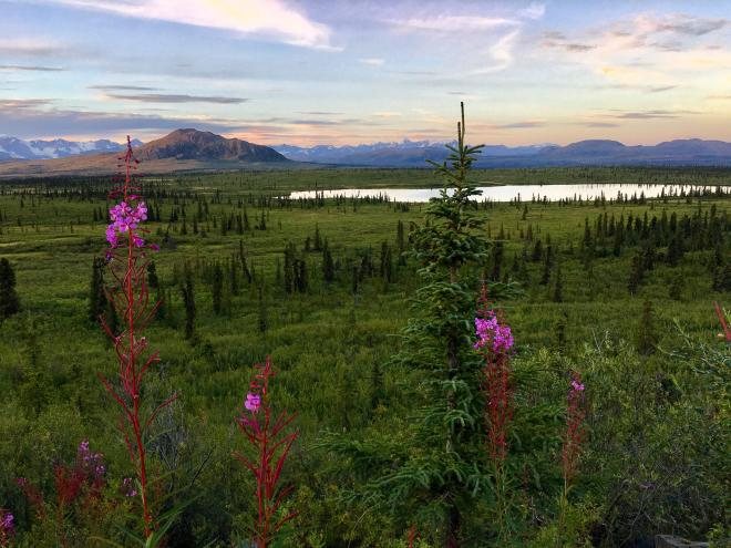 The interior of Alaska at the end of summer. Source: Reddit