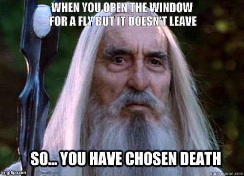 Fly You Fool Lotrmemes