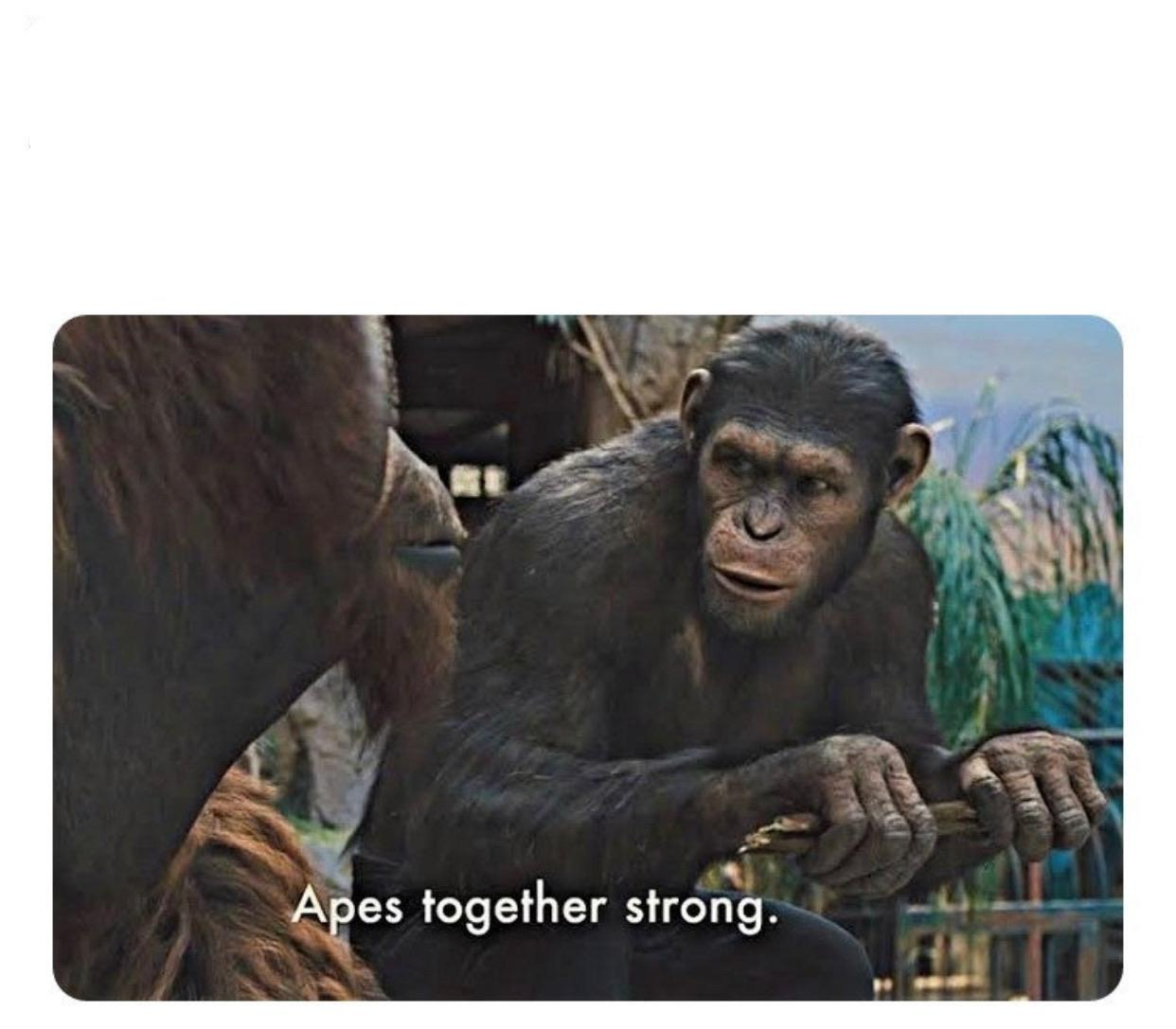 Apes Together Strong Template Memetemplatesofficial