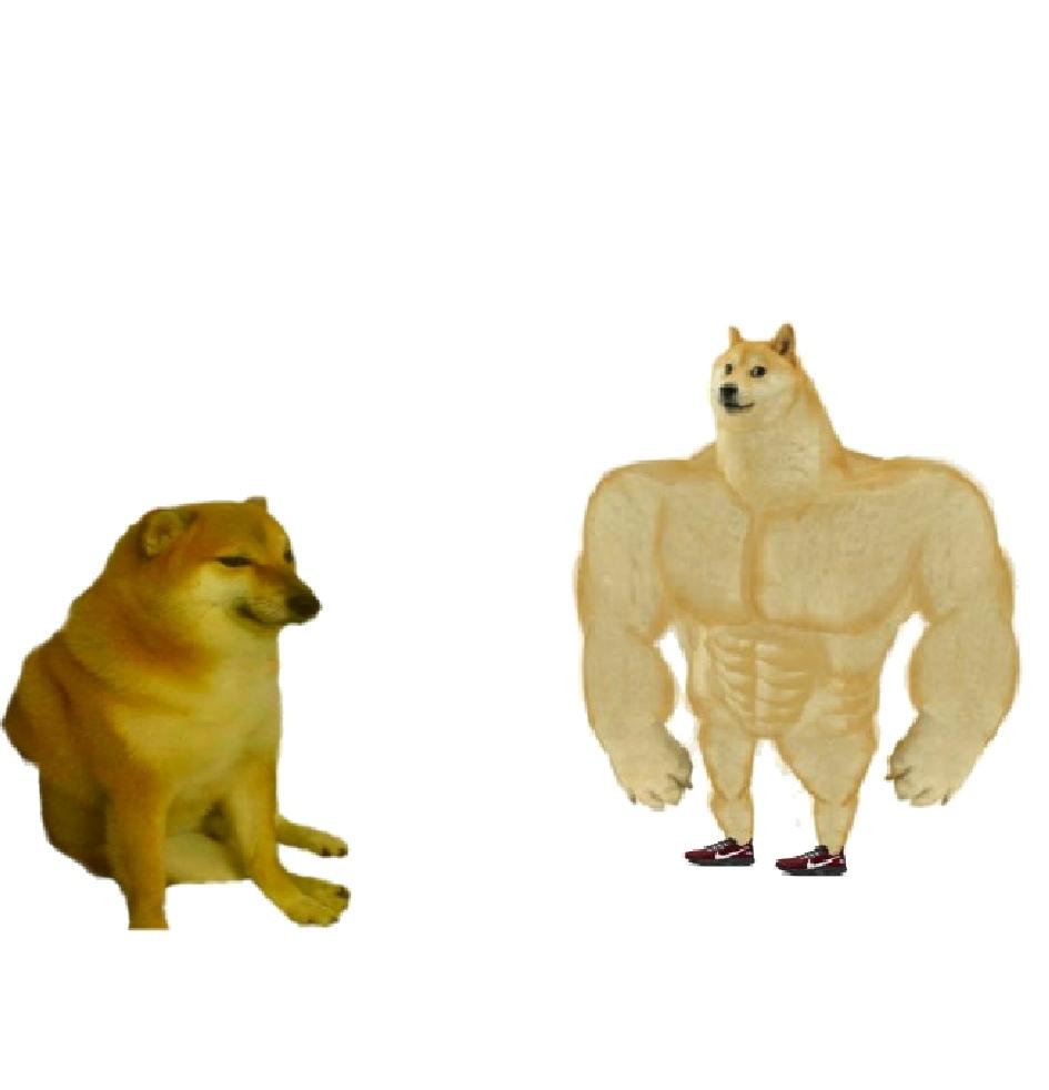 Doge Meme Generator Funny Png