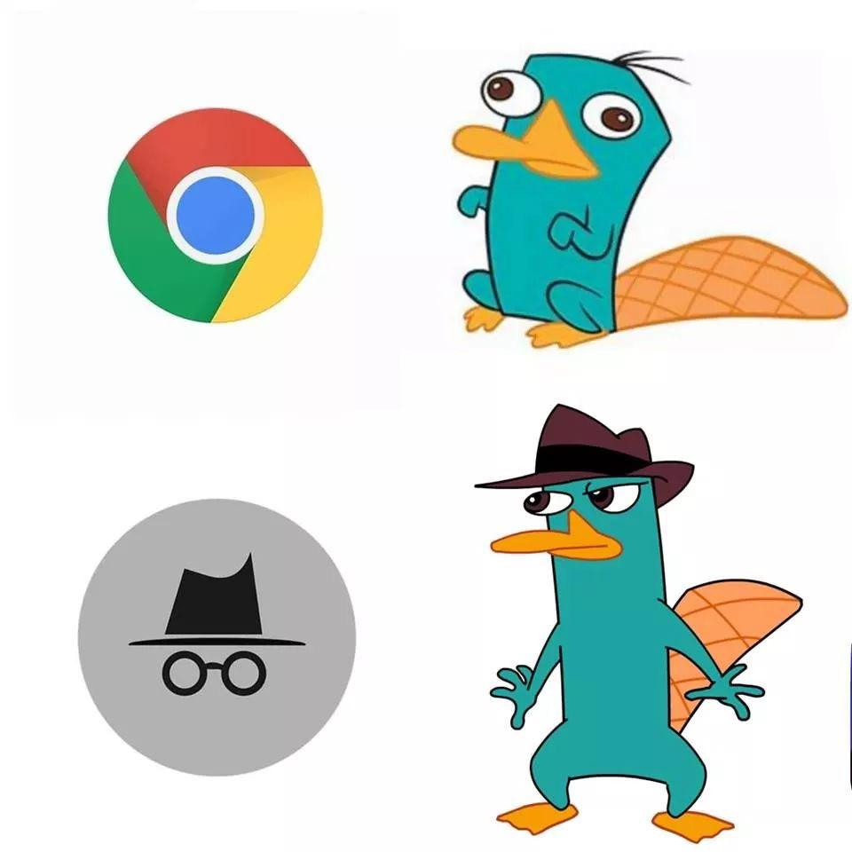 Where S Perry Memes