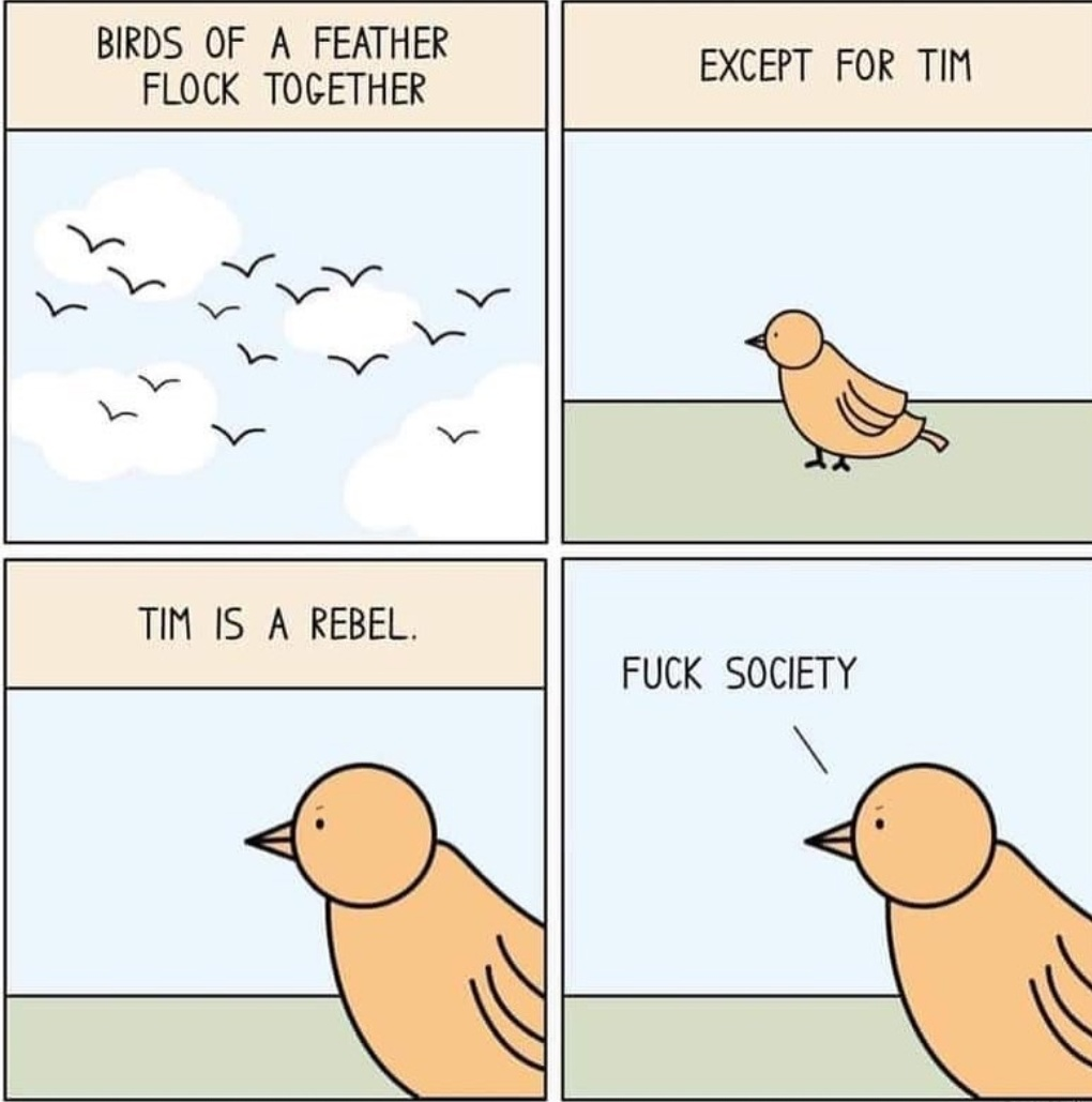 Aww The Society Is A Pain In Arse Meme