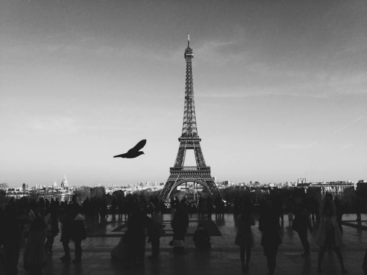 Eiffel Tower, Paris (Photo credit to Louis Pellissier) [3264 x 2448]