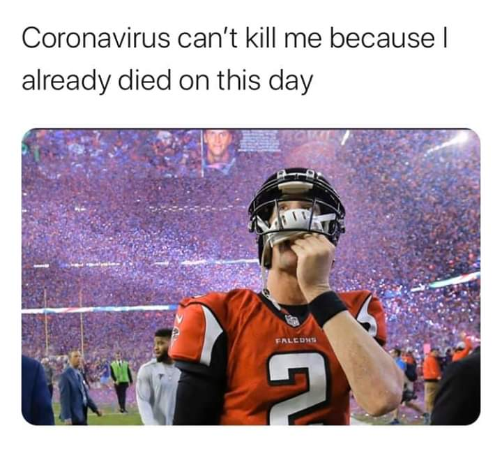 I Just Stole This Meme Falcons