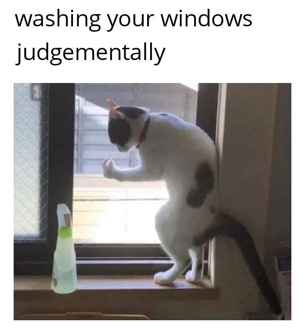 Enjoy Your Weekend Memes